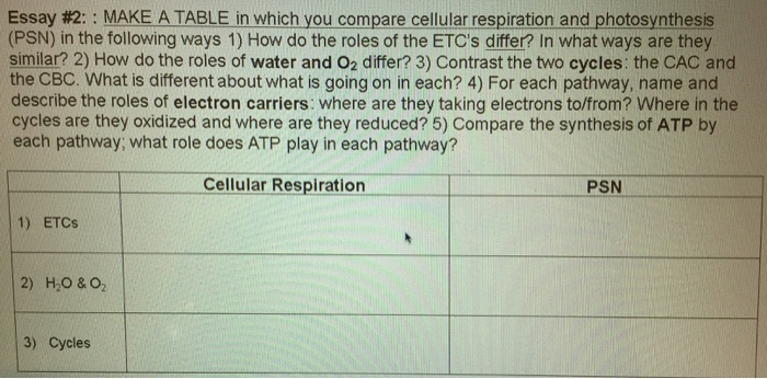 compare and contrast aerobic respiration and photosynthesis