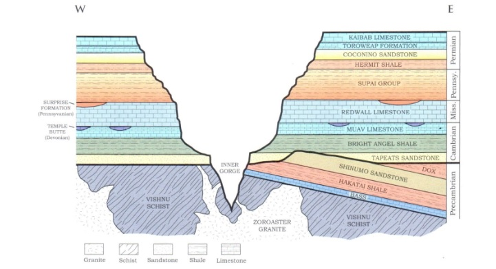 Solved: What Is The Oldest Body Of Rock In The Grand Canyo... | Chegg.comChegg