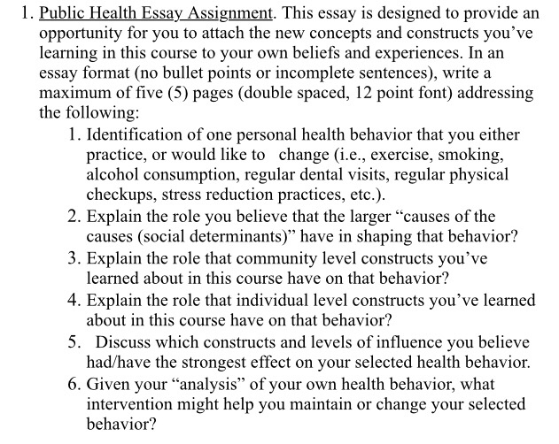 public health essay assignment this essay is d  cheggcom public health essay assignment this essay is designed to provide an  opportunity for