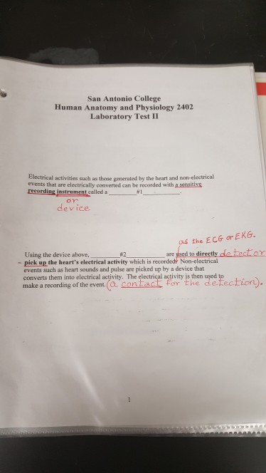 Solved: San Antonio College Human Anatomy And Physiology 2