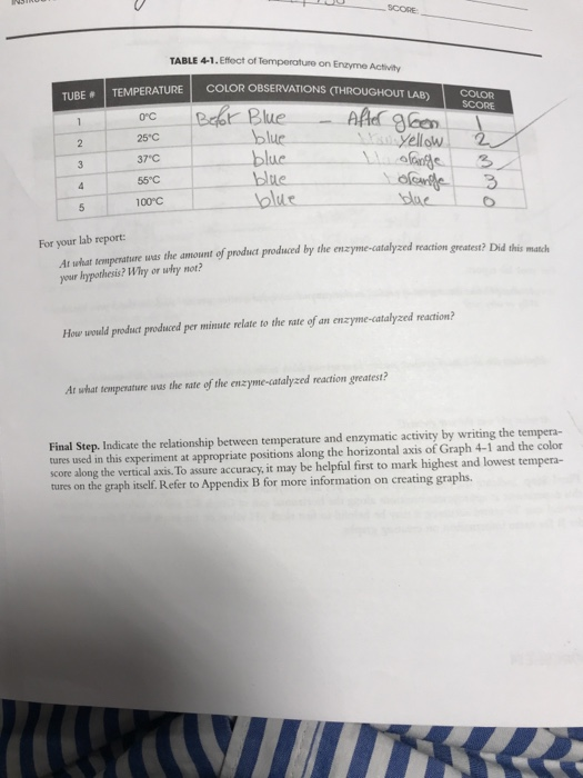 enzyme temperature lab report