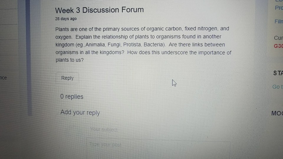 relationship discussion forums