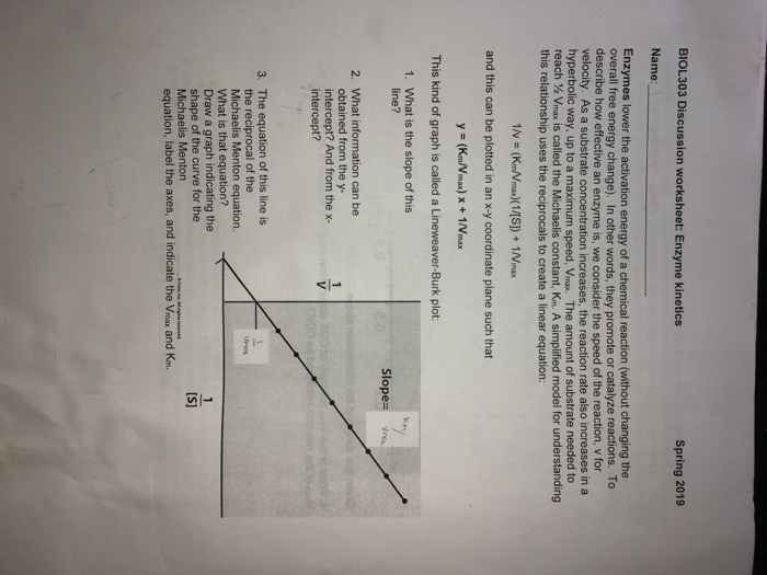 BIOL303 Discussion Worksheet: Enzyme Kinetics Spri... | Chegg.com