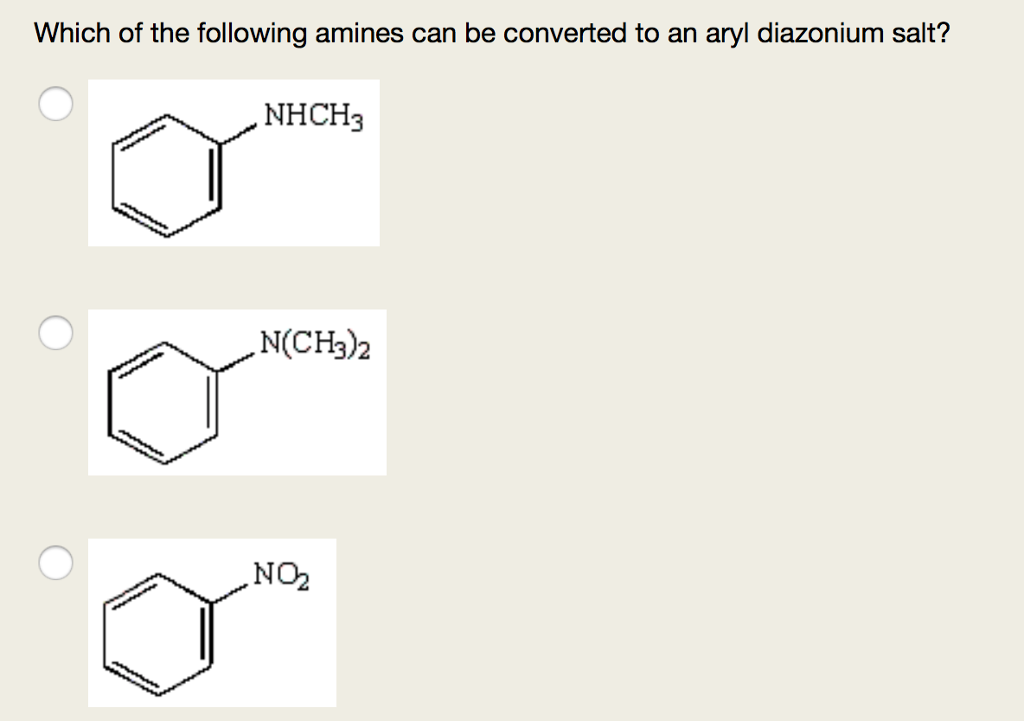 Which of the following amines can be converted to an aryl diazonium salt? NHCH3 N(CH3)2 NO2