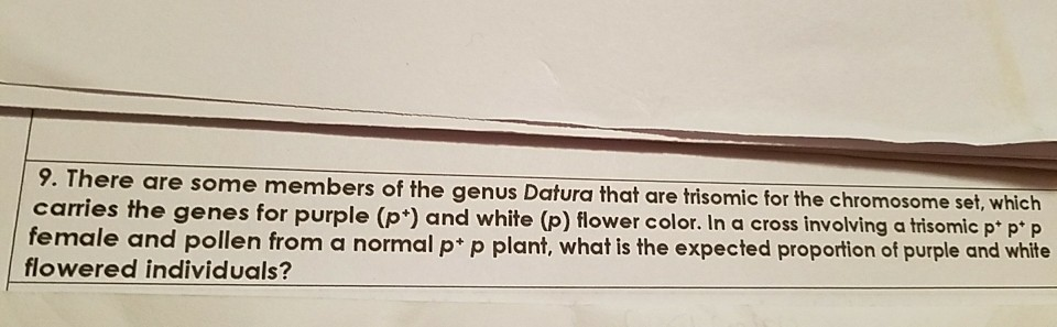 9. There are some members of the genus Datura that are trisomic for the chromosome set, which carries the genes for purple (p