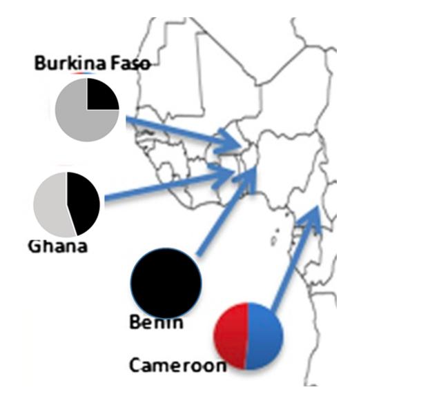 BurkinaF Ghana Benin Cameroo