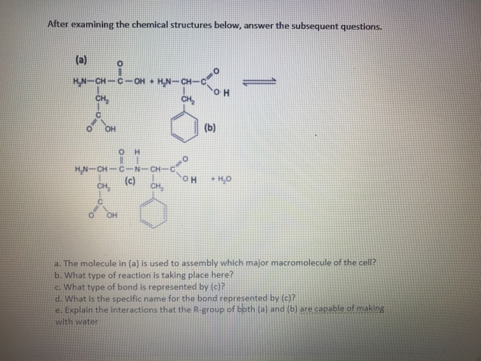 Biology archive november 04 2017 chegg after examining the chemical structures below answer the subsequent questions 0 9 o fandeluxe Image collections