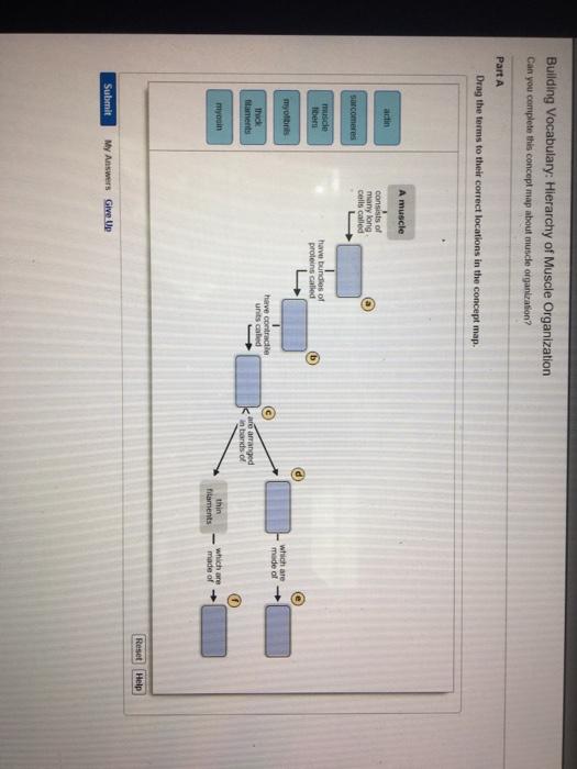 Sq3r textbook study system
