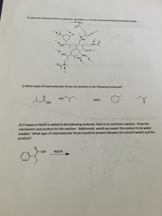 Solved: Label The Indicated Atoms As Primary, Secondary, O