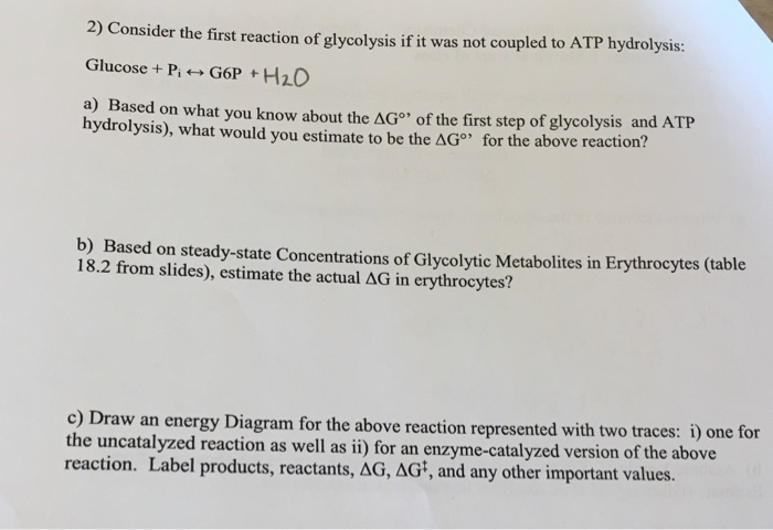 Consider the first reaction of glycolysis if it wa chegg 2 consider the first reaction of glycolysis if it was not coupled to atp hydrolysis ccuart Images