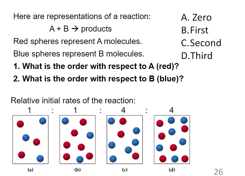 Here Are Representations Of A Reaction Zero B First C Second