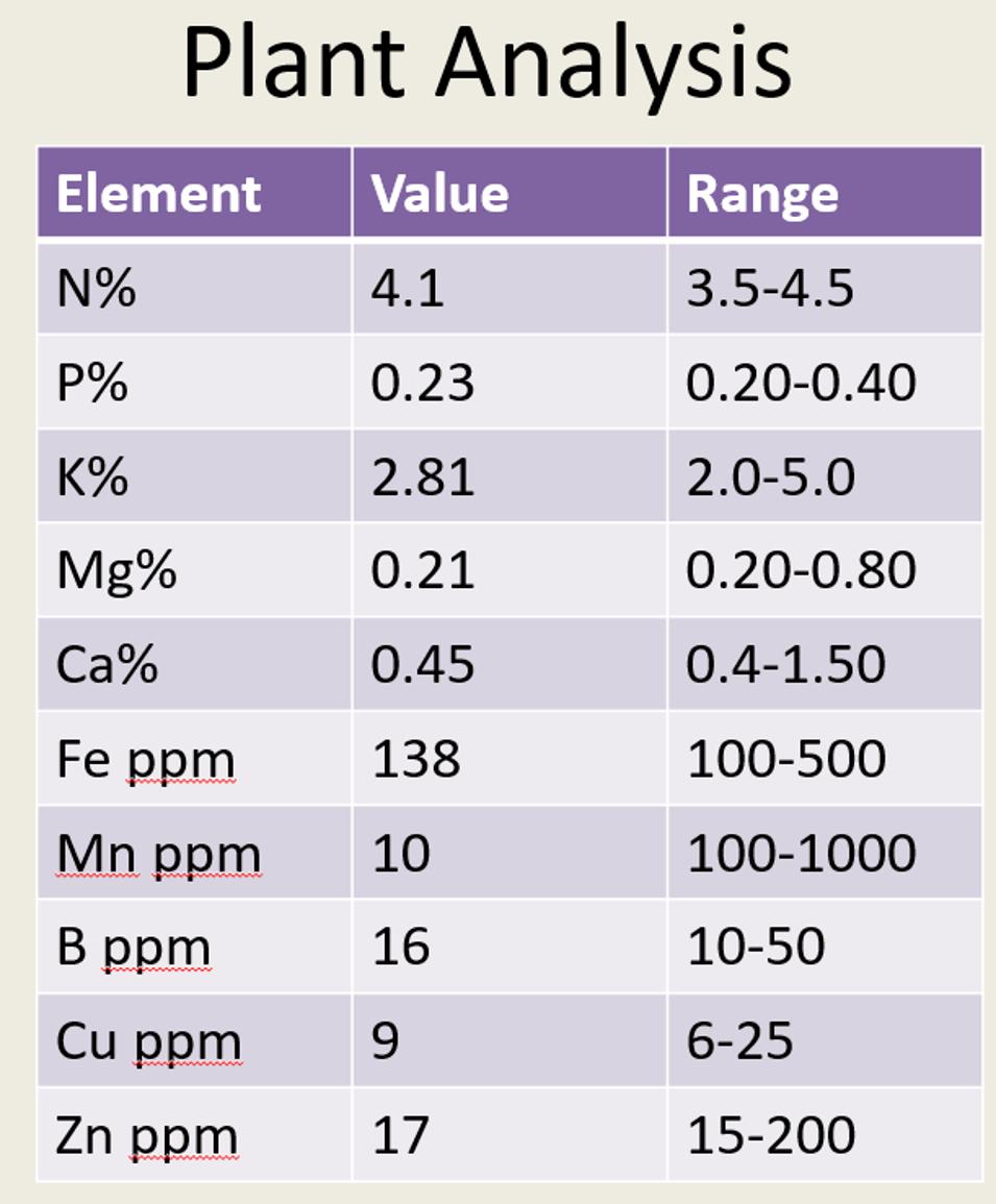 Plant Analysis Element Value Range N% 4.1 3.5-4.5 P% 0.23 0.20-0.40 K% 2.81 2.0-5.0 Mg% 0.21 0.20-0.80 Ca% 0.45 0.4-1.50 Fe p
