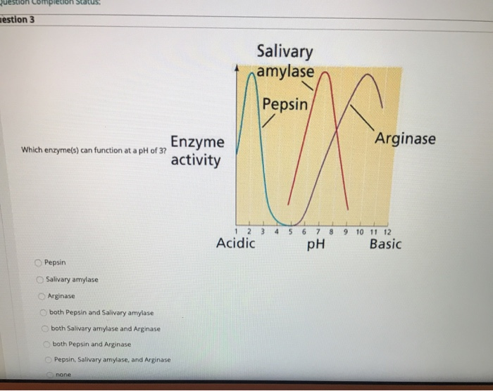 Completion Status estion 3 Salivary namylase Pepsin Arginase Which enzyme(s) can function at a pH of 37 Enzyme activity 3 456