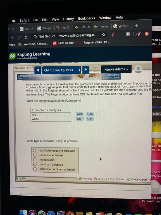 Help Window Bookmarks History View Edit File Safari G gene in media. Uni X HW 3 5Cer X Cenga O Not Secure www.saplinglearning