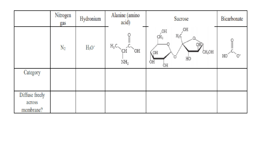 Solved 5 The Molecules Below Are Often Moved Into Or Out Chegg Com