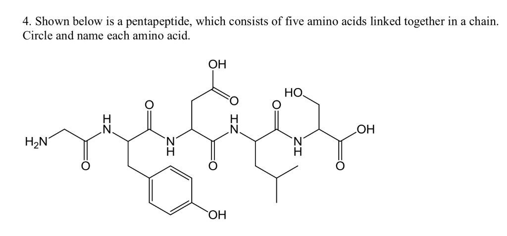 acids five amino