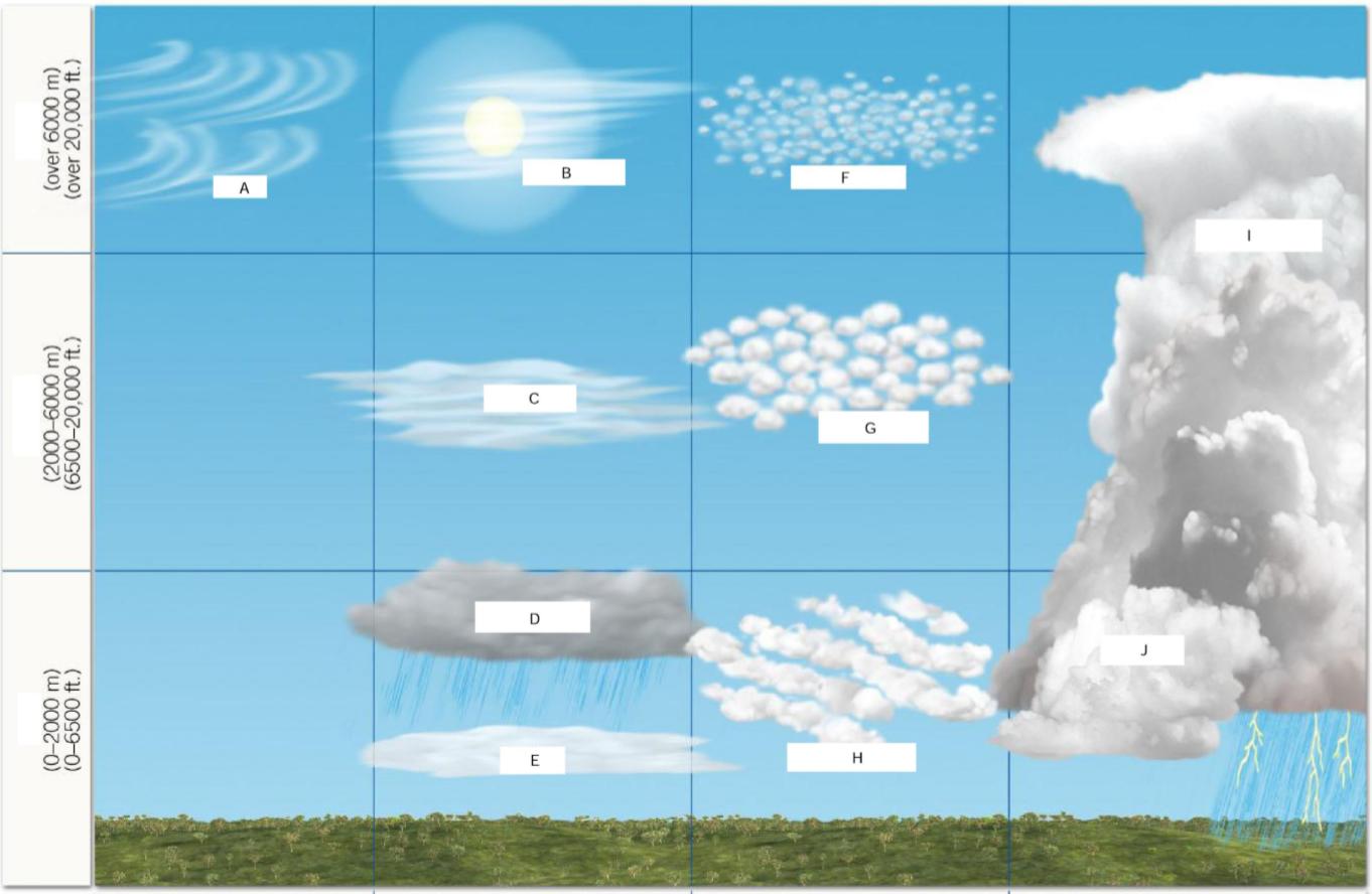 Windhager semis de d/écran Super Grow 35/microns 5/x 1,35/m Transparent