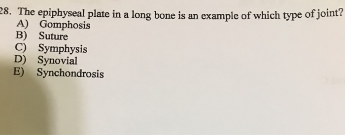 Solved 28 The Epiphyseal Plate In A Long Bone Is An Exam Chegg Com There are four types of synarthroses, categorized based on the type of tissue connected to the articulating bone surface: epiphyseal plate in a long bone
