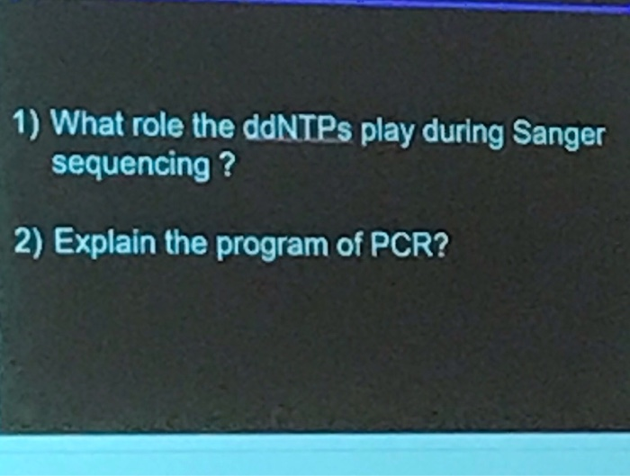 1) What role the ddNTPs play during Sanger sequencing? 2) Explain the program of PCR?