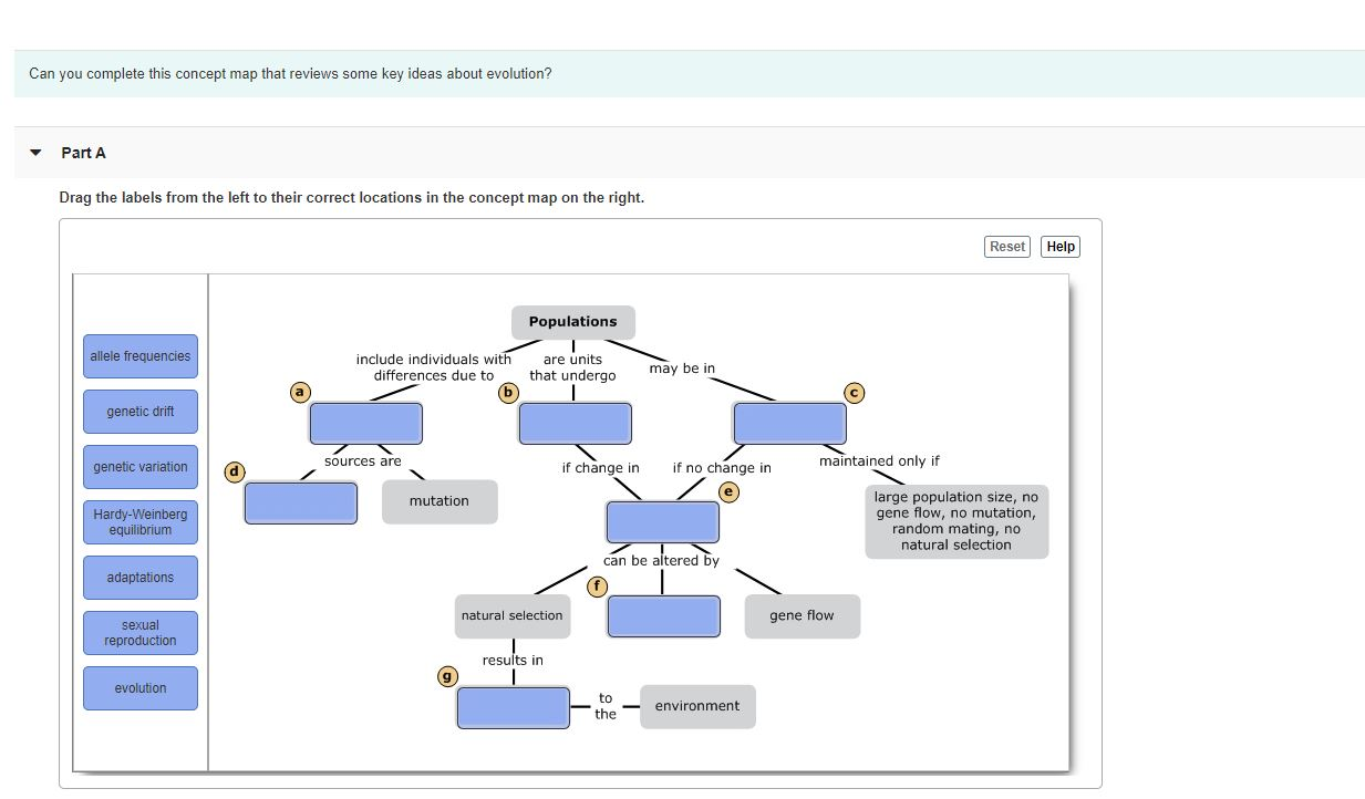 Solved Can You Complete This Concept Map That Reviews Som