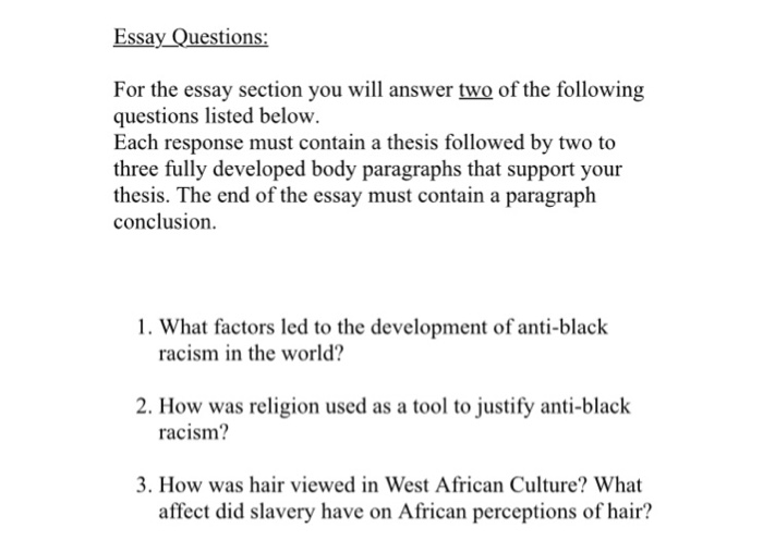 essay question on racism