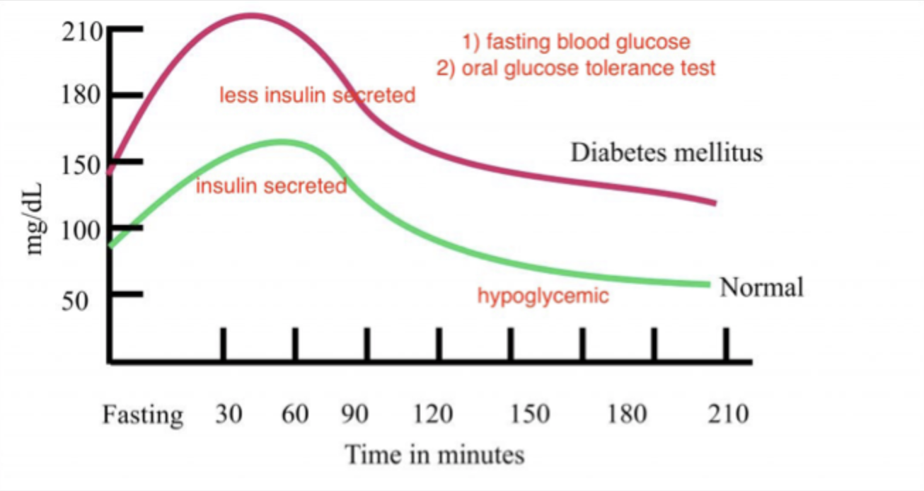 Solved This Is A Graph Of A Glucose Tolerance Test On Two ...
