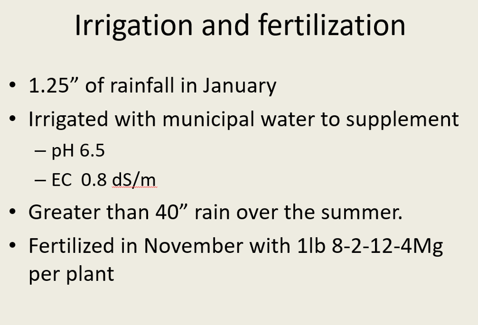"""Irrigation and fertilization • 1.25"""" of rainfall in January • Irrigated with municipal water to supplement - pH 6.5 – EC 0.8"""