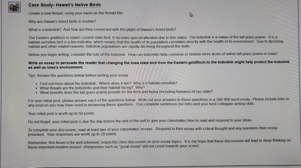 Bird essay help