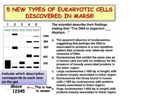 5 NEW TYPES OF EUKARYOTIC CELLS DISCOVERED IN MARS!! 1 2 3 4 5 The scientist describe their findings stating that The DNA in