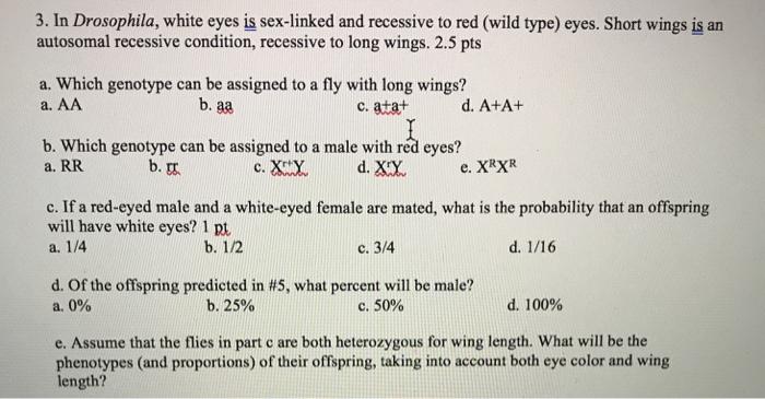Sex wild eyes