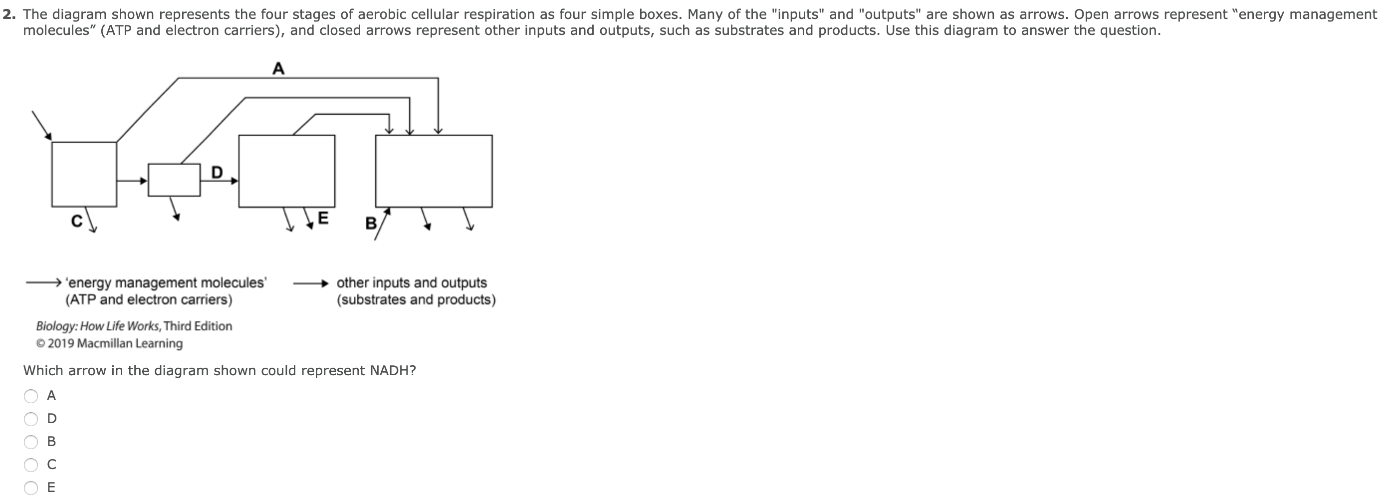 Solved 2 The Diagram Shown Represents The Four Stages Of Chegg Com
