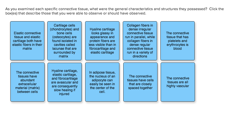 As You Examined Each Specific Connective Tissue W Chegg Com