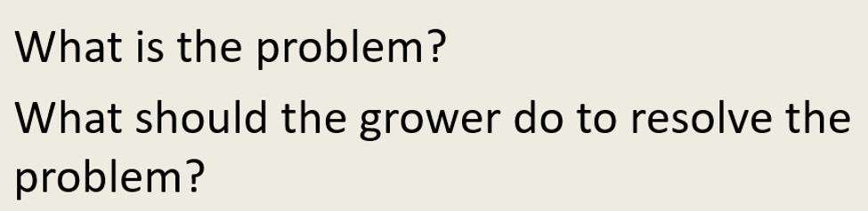 What is the problem? What should the grower do to resolve the problem?