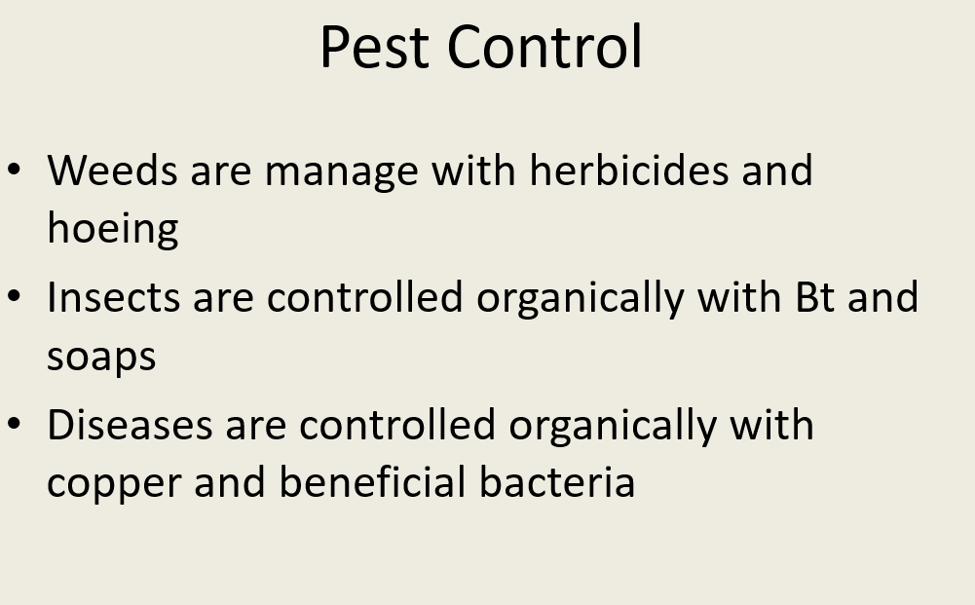 Pest Control • Weeds are manage with herbicides and hoeing • Insects are controlled organically with Bt and soaps Diseases ar