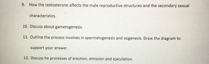 Secondary sexual characteristics testosterone