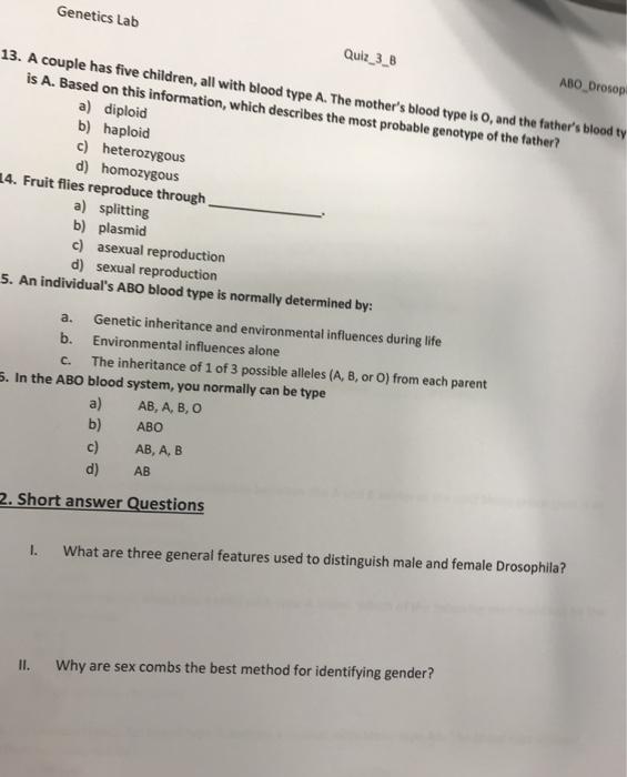 Couple sex quiz