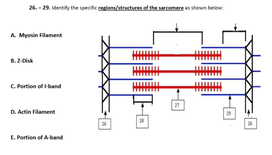 Solved  26   Structures