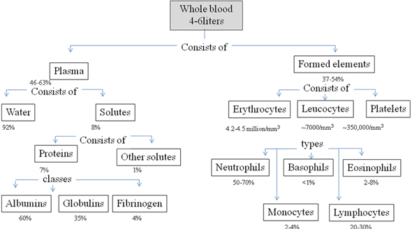 Blood Concept Map Answers Solved: Use the terms in the following list to complete the who