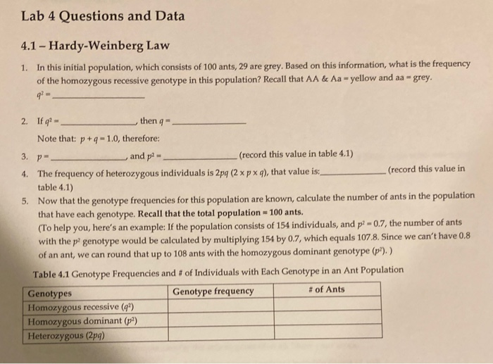 Solved: Lab 4 Questions And Data 4.1 - Hardy-Weinberg Law ...
