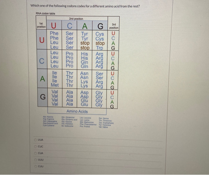 Solved Which One Of The Following Codons Codes For A Diff Chegg Com