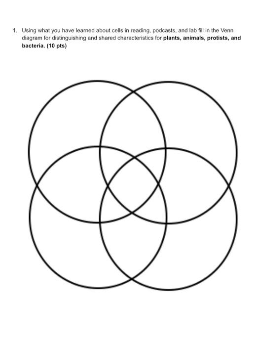 33 Venn Diagram Of Animal And Plant Cells - Wiring Diagram ...