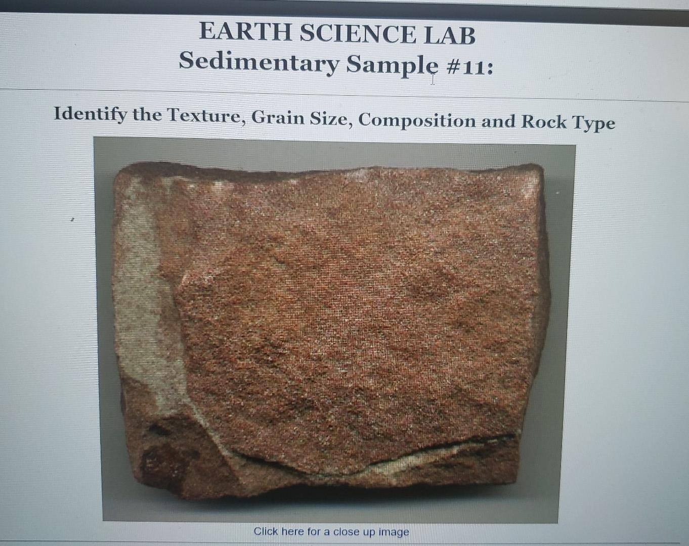 EARTH SCIENCE LAB Sedimentary Sample #11: Identify the Texture, Grain Size, Composition and Rock Type Click here for a close