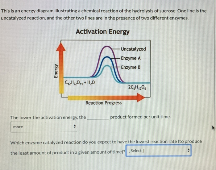 Solved This Is An Energy Diagram Illustrating A Chemical