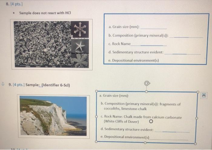 8.[4 pts.] • Sample does not react with HCI a. Grain size (mm): b. Composition (primary mineral(s)): c. Rock Name d. Sediment