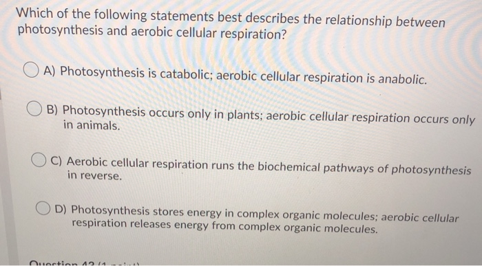 Which best describes the nature of cellular respiration? - Brainly.ph