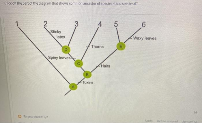 Click on the part of the diagram that shows common ancestor of species 4 and species 6? 1 3 4. 5 6 Sticky latex Waxy leaves T