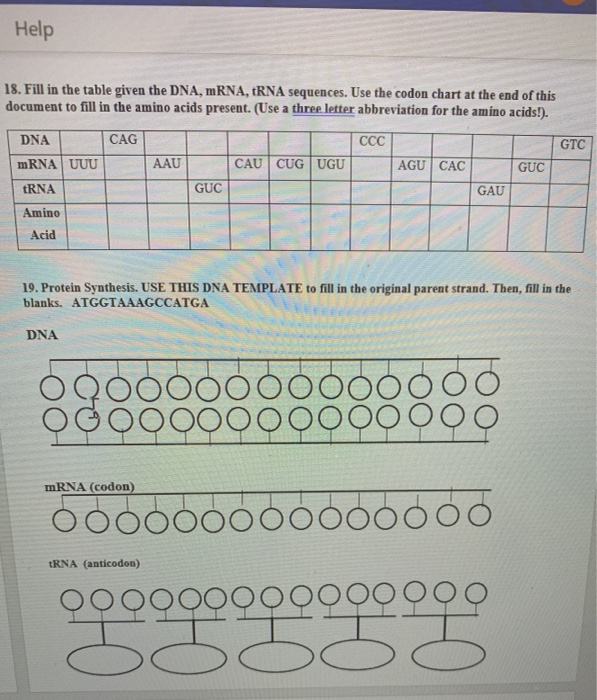 Solved Help 18 Fill In The Table Given Dna Mrna Rn Chegg Com