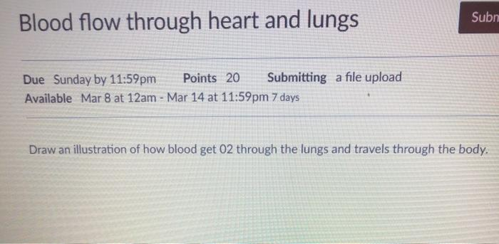 Subn Blood flow through heart and lungs Due Sunday by 11:59pm Points 20 Submitting a file upload Available Mar 8 at 12am - Ma
