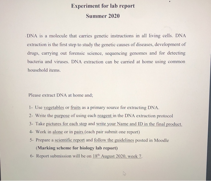 Experiment For Lab Report Summer 2020 Dna Is A Mol Chegg Com