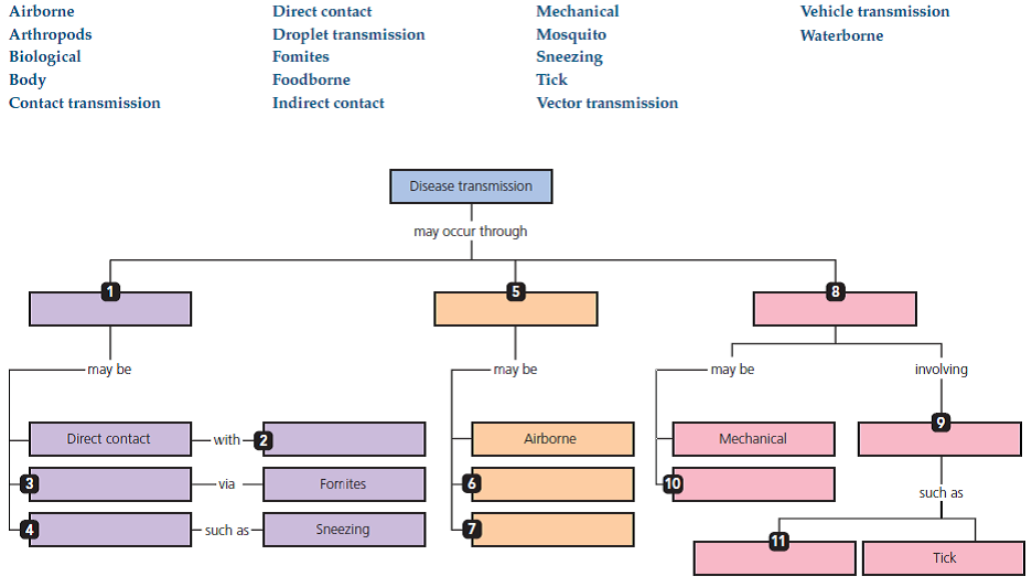 types of disease transmission concept map answers Solved Using The Following Terms Fill In The Following Concep
